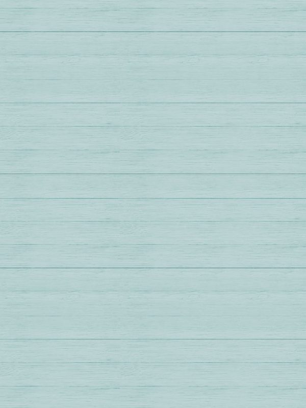 carta-PATTERN-LegnoShabby-Azzurropart